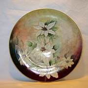 Awesome Austrian Porcelain Cabinet Plate~ Hand Painted with White Poinsettias ~ ALTROHLAU PORCELAIN FACTORIES - MORITZ ZDEKAUER Austria 1884-1909