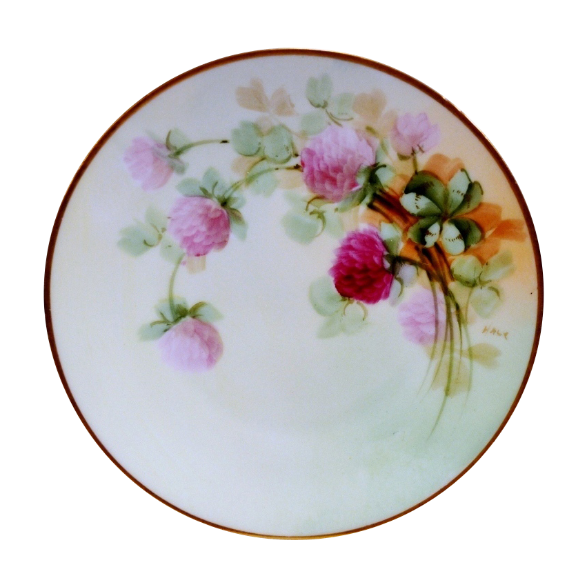Beautiful 6 5 8 Bavaria Plate Hand Painted With Pink