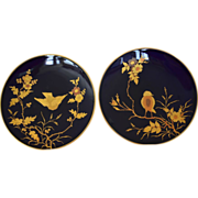 2 Gorgeous Cabinet Plates ~ Cobalt with Raised Gold Paste Birds ~ Fischer & Meig Pirkenhammer,Czechoslovakia 1873-1918