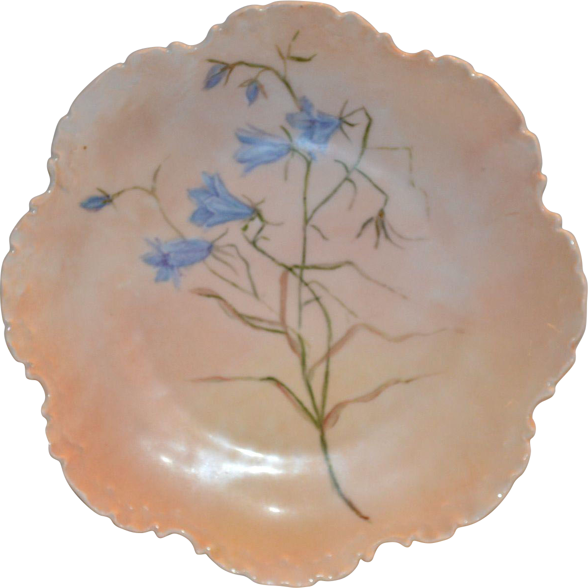 50% OFF Outstanding Rosenthal Cabinet Plate Hand Painted with Blue Wispy flowers on a Peach Background – Bavaria 1896-1907