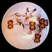 Beautiful Bavarian Plate Hand Painted with Blue Birds and Pine Cones ~ Jaeger & Co 1902 +