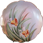 Wonderful Limoges Porcelain Plate with Hand Painted Yellow Daffodils – Limoges France 1892+