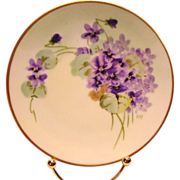 "Pickard Studio Decorated ~ Cabinet Plate ~ Hand Painted with Purple Violets ~ Artist Signed ""DEV'' - DEVOE ~ Thomas Bavaria~ 1912-1919"