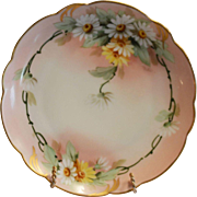 "50% OFF! Charming Pickard Studio Decorated ~ Bavarian Porcelain Cabinet Plate ~ Hand Painted with Yellow and White Daisies ~ Signed by ""Fredrick Walters' ~ Rosenthal / Pickard 1905-1910"