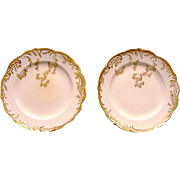 2 Gorgeous English Porcelain Plates ~ Hand Painted with Gold ~ George Jones & Sons ( GJ )1890-1891