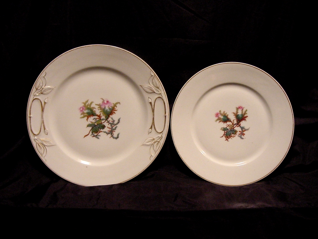 2- Very Old Beautiful Limoges Porcelain Plates ~ Studio Decorated ~ Moss Ross Pattern ~ Haviland & Co / Tressemann & Vogt (RARE) 1876-1891