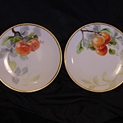 "50% OFF Two (2) Beautiful Limoges Porcelain Plates ~ Hand Painted with Fruit by Artist "" Luc "" ~ Limoges France / NMI Co 1891 +"