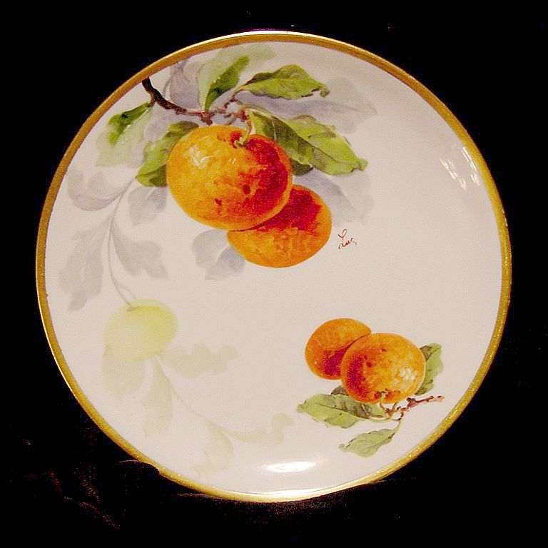 "Beautiful Limoges Porcelain Plates ~ Hand Painted with Fruit by Artist "" Luc "" ~ Limoges France / NMI Co 1891 +"