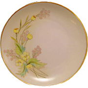 "50% OFF! Beautiful Pickard / Rosenthal Bavarian Porcelain Cabinet Plate ~ Hand Painted with Yellow Buttercup ~ Artist ""Anton Beutlich"" Signed ~ 1905-1910"