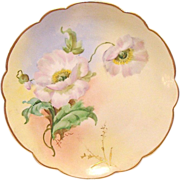 "Wonderful Bavarian Porcelain Cabinet Plate ~ Hand Painted by Pickard Artist ""Florence James"" with Poppies ~ Rosenthal Bavaria/ Pickard 1905-1910"