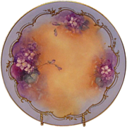 "Astonishing Limoges ART PLATE ~ PICKARD Hand Painted with Violets by artist ""Hahn""  ~ Tressemann & Vogt  ( T & V )/ Pickard Studio 1892-1907"