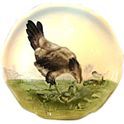 Adorable French Majolica / Faience Cabinet Plate with Hen and Chicks ~ Hippolyte Boulenger Choisy-le-Roi France 1860-1910