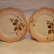 2 ~  Awesome Limoges Porcelain Cabinet Plates ~ Hand Painted with Embossed Gold Flowers & Leaves ~ R. DELINIERES & CO (D&C) France 1894-1900