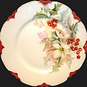 50 % OFFCharming Limoges Porcelain Cabinet Plate ~ White Pink Flowers with Red Holly berries ~ Haviland & Co 1888-1896