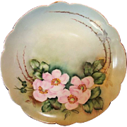 "50% OFF! Exceptional Bavarian Porcelain Cabinet Plate ~ Hand Painted with Wild Pink Roses ~ Artist "" Lebovitz ""Signed ~ Bavaria 1910"