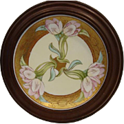 Beautiful Framed Plate ~ Art Nouveau ~ Hand Painted Pink Tulips ~ Signed ~Amphora