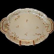 "Platter ~ 14"" Limoges Porcelain ~ Pink Roses ~ Emery Bird Thayer Co Kansas City  MO ~ Theodore Haviland Limoges France ~ 1903"