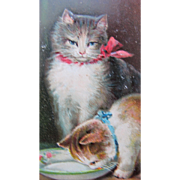 Post Card of Cats for Birthday Greetings Tucks