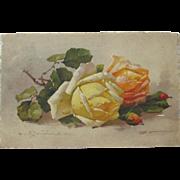 Post Card Artist Signed Catherine Klein Unused