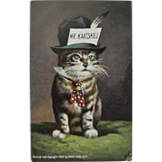 Post Card Cat Mr Kaatskill Dressed Animal