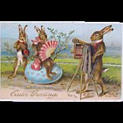 Easter Post Card Dressed Rabbits Fantasy Postcard