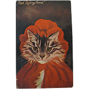 Rare Postcard Dressed Cat as Red Riding Hood Artist Signed G. L. Barnes 1908