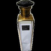 Rare Perfume Bottle Commercial Renee Thornton Duchess of Carafa Mistress of the Night