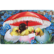 Easter Post Card with Chicks in Painted Egg Shells Umbrella