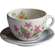 Vintage Great Northern Railroad Mountains and Flowers China Coffee Cup and Saucer Set