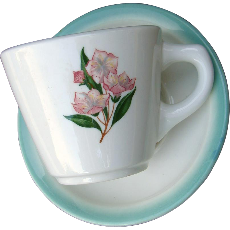"PRR Pennsylvania Railroad China ""Mountain Laurel"" Cup and Saucer Set"