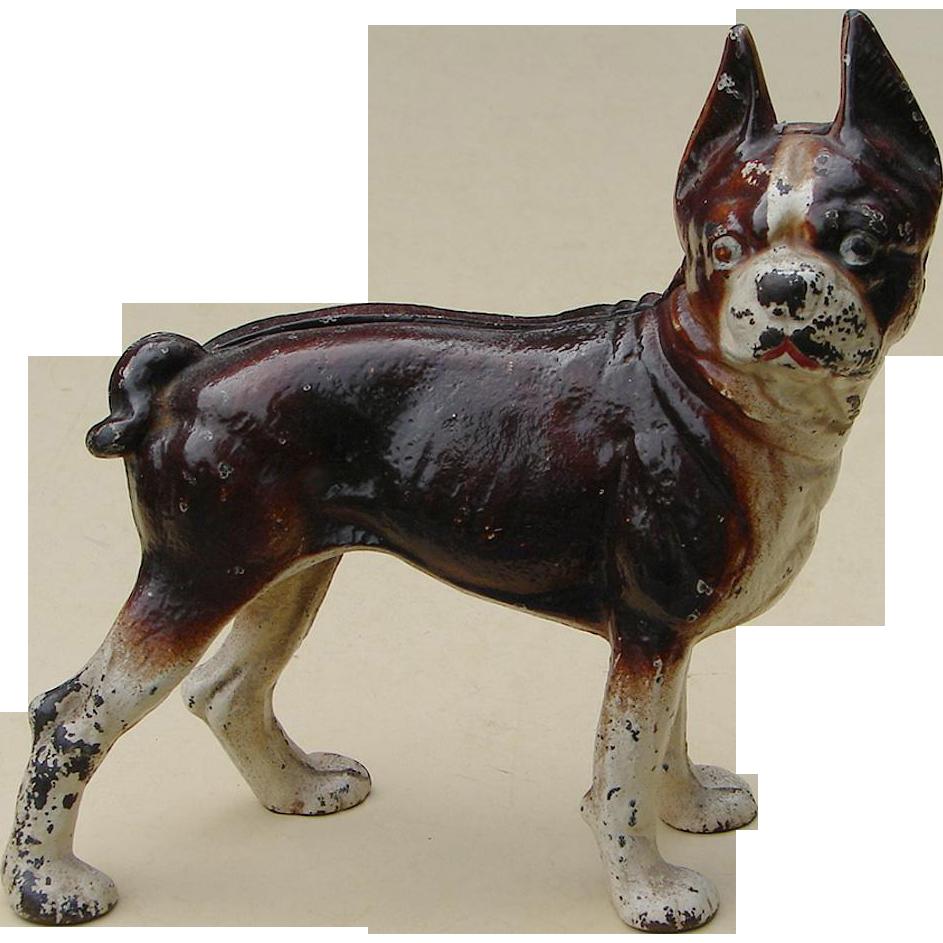Scarce Brown Antique Hubley Boston Bull Terrier Dog Cast Iron Doorstop