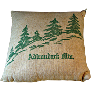 Vintage Adirondack Mountains Tourist Souvenir Balsam Fir Pillow Mid Century