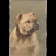 c1920 Too Cute Art Postcard signed ARTHUR WARDLE English Bulldog