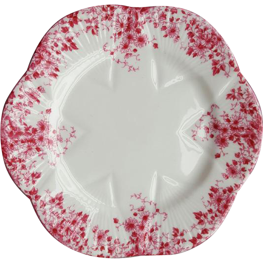 Shelley Fine Bone China Porcelain Dainty Pink Under Plate