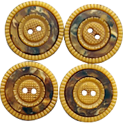 4 Matching Celluloid Buttons Marbled Insets in Scored Flowers 1915