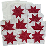 29 Antique Quilt Blocks Squares Turkey Red circa 1900