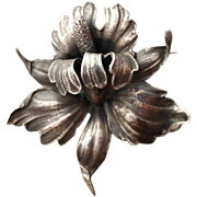 Large Cini Sterling Silver Iris Brooch Signed Guglielmo 33.8 grams .925 for Gumps