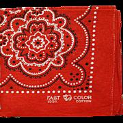 Vintage Red Cotton Western Bandana Handkerchief Elephant Trunk Down