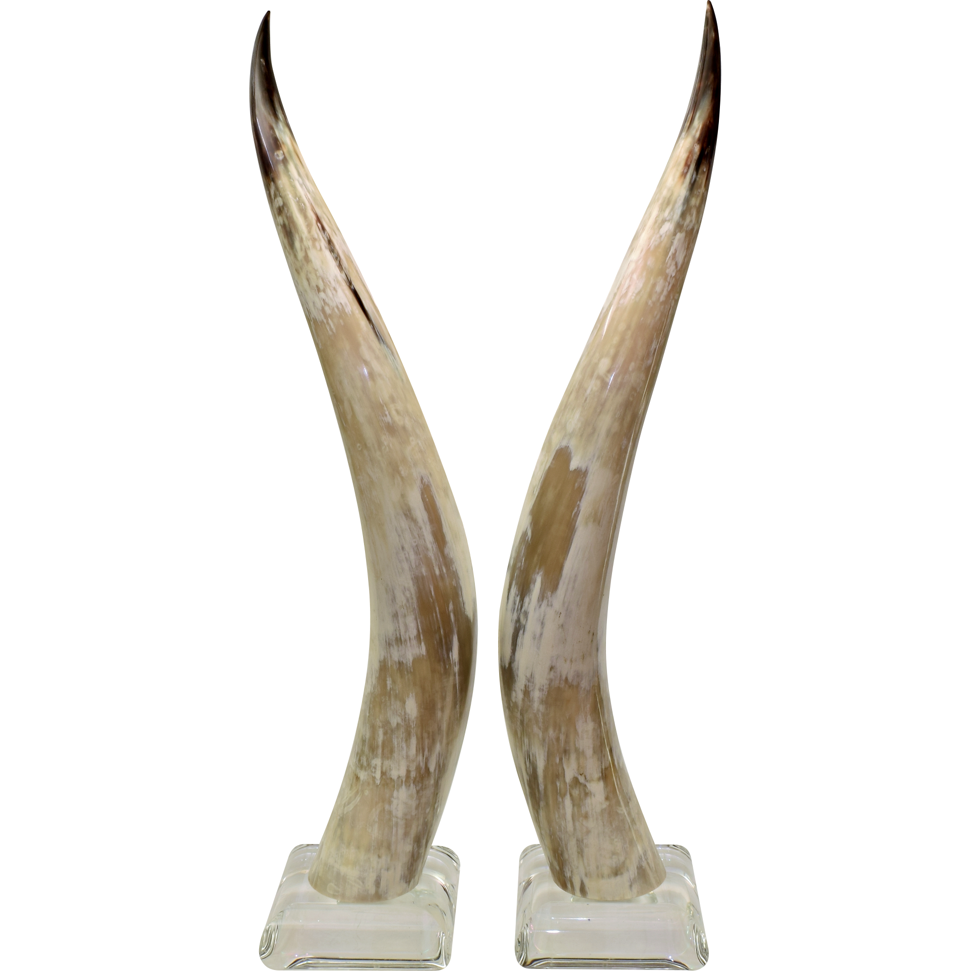 Tall Pair Vintage Lucite Mounted Steer Horns