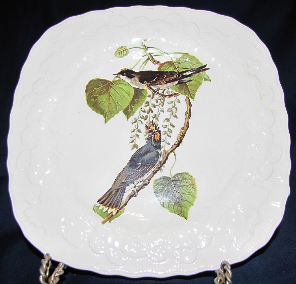 Square Audubon Dessert Plate, KINGBIRD, Alfred Meakin