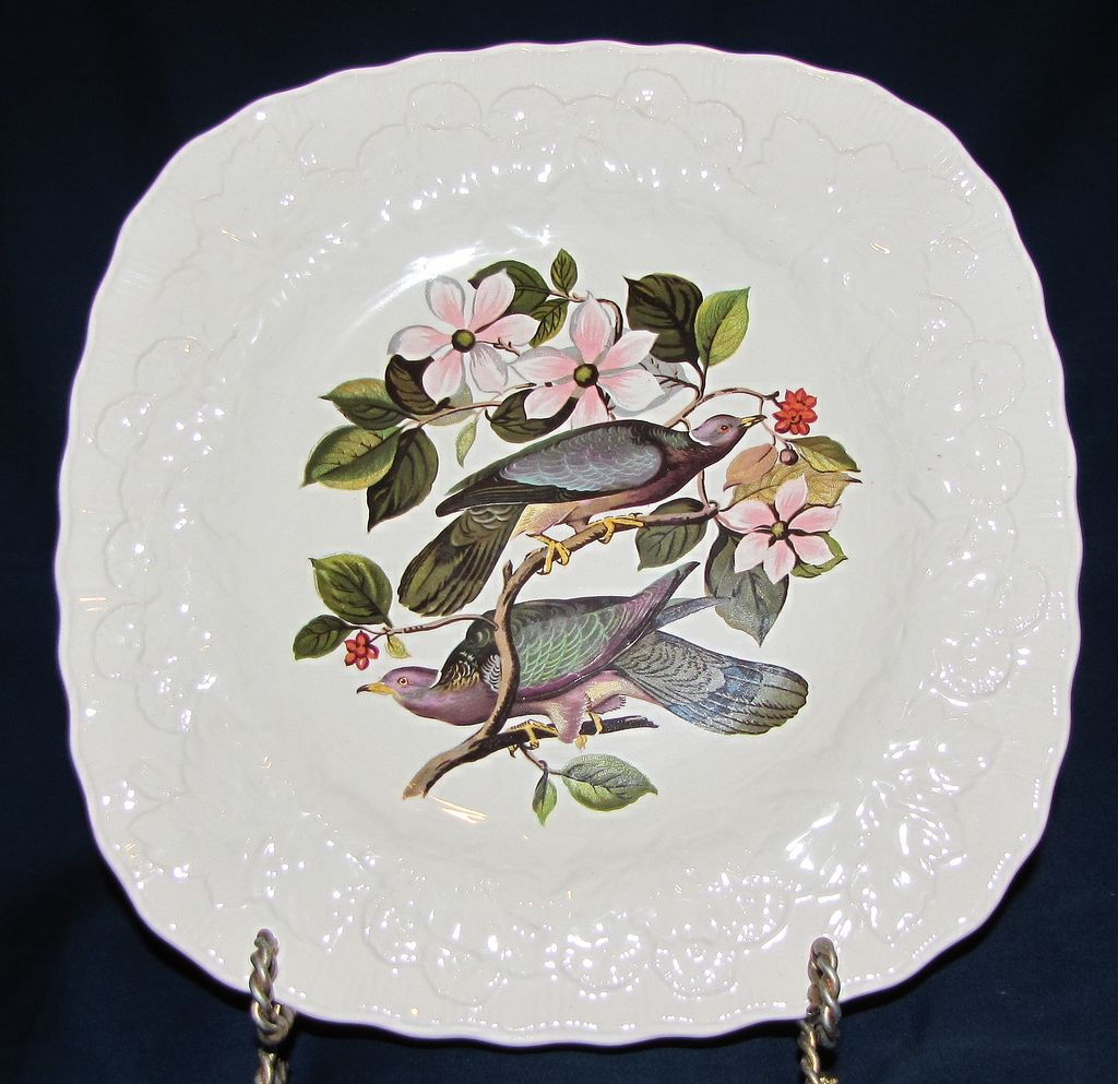 Square Audubon Dessert Plate, BAND-TAILED PIGEON, Alfred Meakin