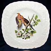 Square Audubon Dessert Plate, CAROLINA TURTLE DOVE, Alfred Meakin