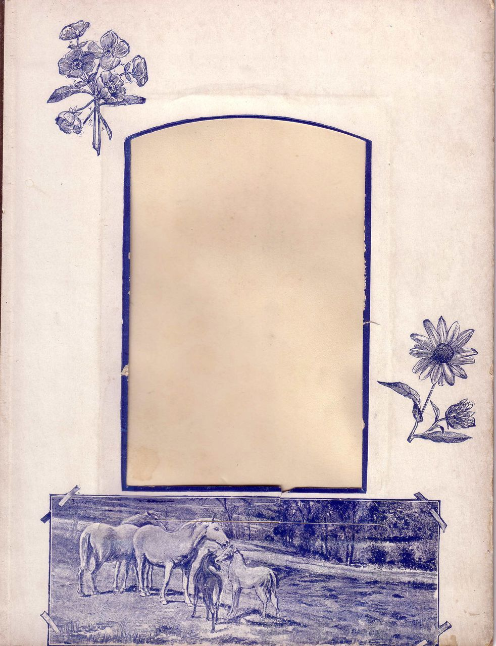 Blue Printed Page from Victorian Photograph Album