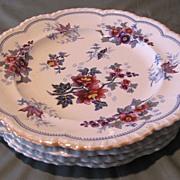 Group of 4 Early Polychrome Plates, JOHAN FLOWERS, J.W.R. CA 1814-30