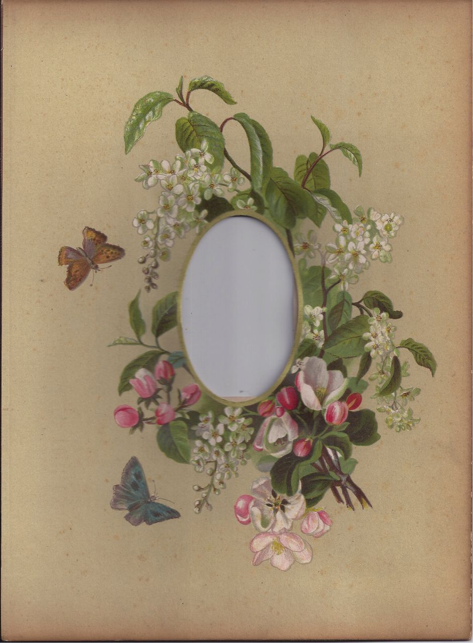 Lovely Chromolithograph Page from Victorian Photo Album, Roses, CDV