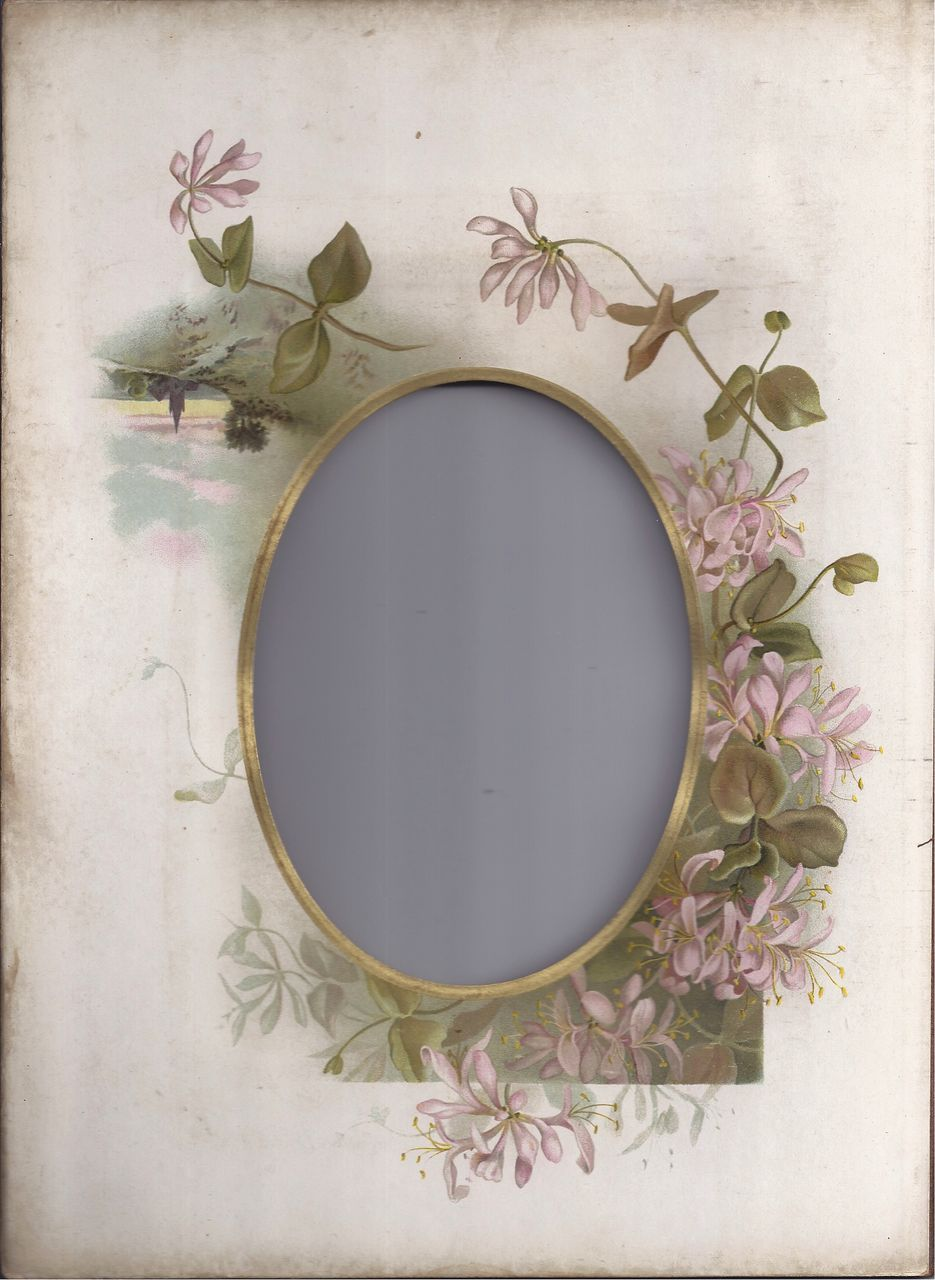 Lovely Chromolithograph Page from Victorian Photo Album, Pink Vine