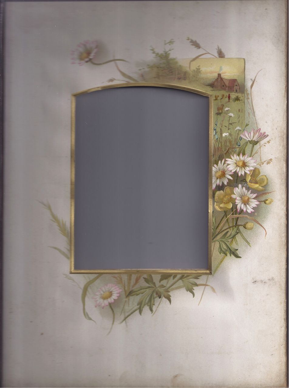 Lovely Chromolithograph Page from Victorian Photo Album, Daisies