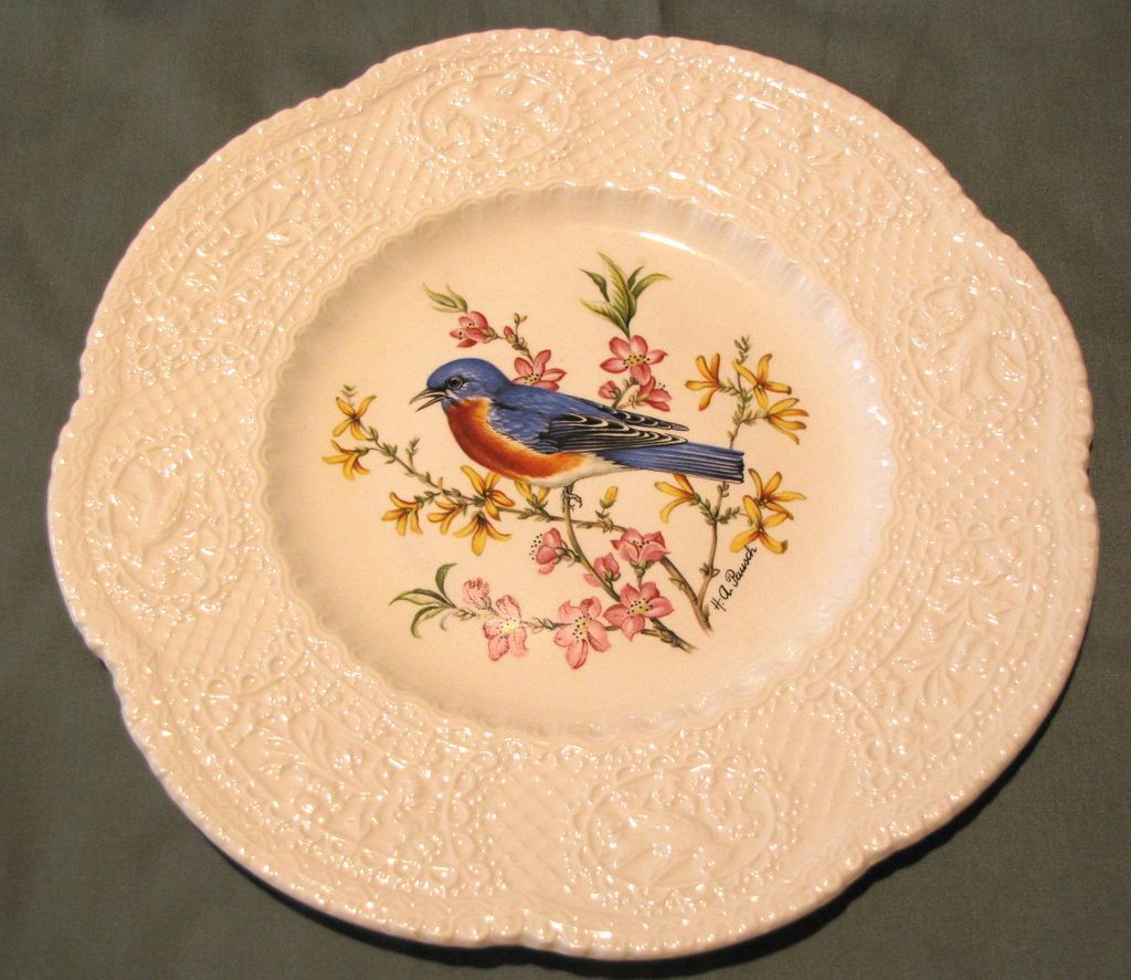 Lovely Royal Cauldon Bird Plate, EASTERN BLUEBIRD, Pausch
