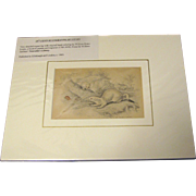 19th Century Engraving by LIZARS, Matted, THE ERMINE In Winter