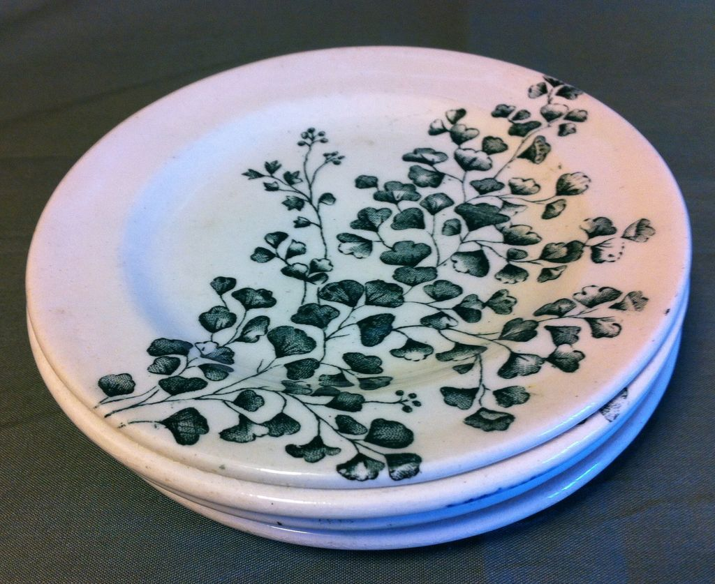 Green Transferware Plate from Child's Teaset Maiden Hair Fern